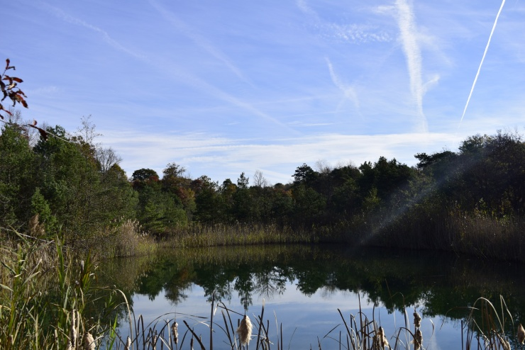 SGL 330 Pond (2)